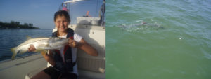 Drag-On Fishing Charter, Sarasota Florida